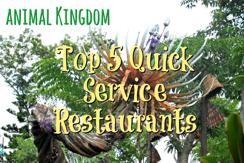Animal Kingdom – Top 5 Quick Service Restaurants